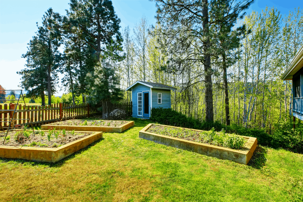 Everything You Need to Know Regarding Raised Garden Beds