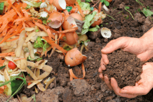 How to Compost and Compostable Items