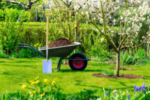 How Much Compost is Needed for a Lawn