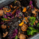 How to Compost in an Apartment?