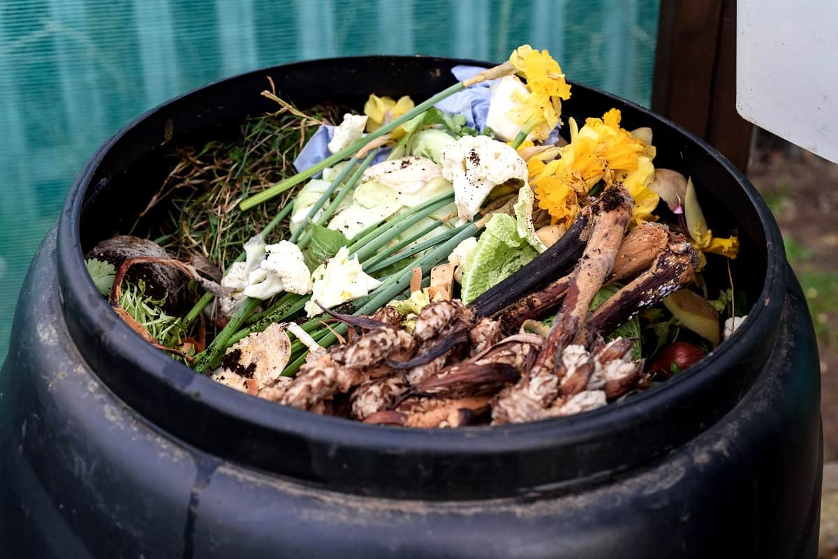 5 of the Best Urban Compost Tumblers