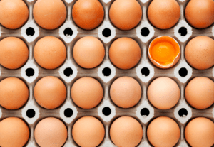 How Can You Compost Egg Shells?