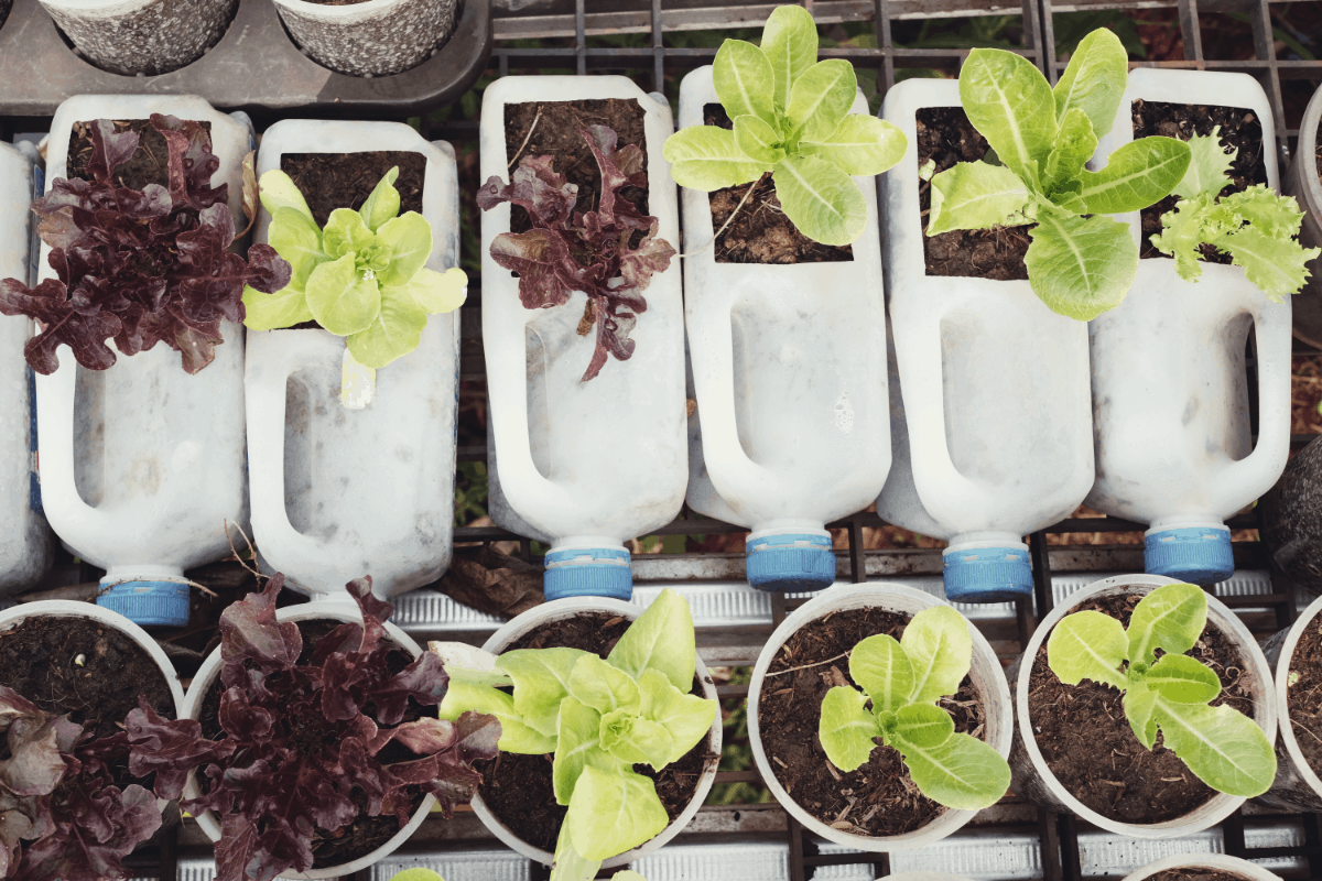 Using Safe Plastics for your Hydroponics