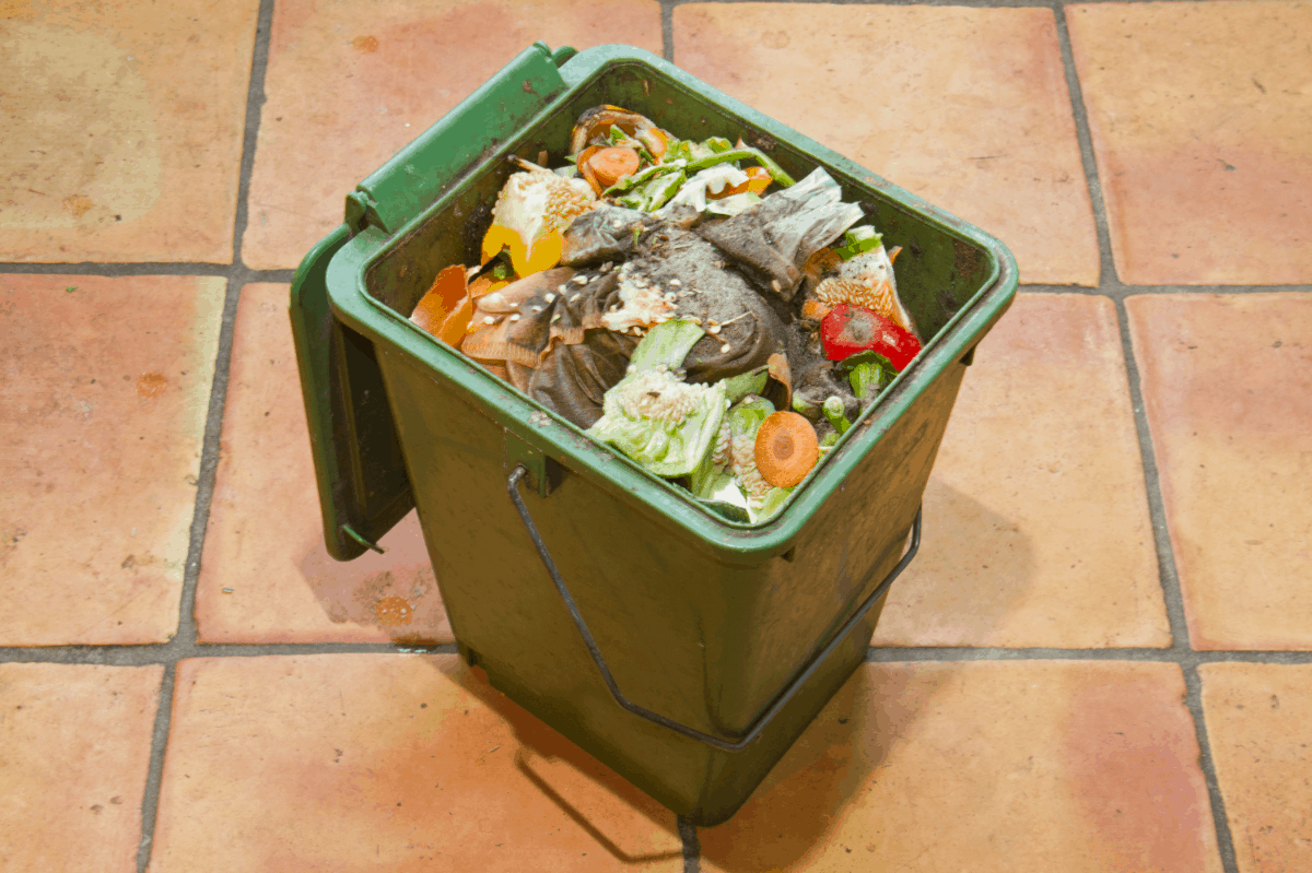 Easy-to-Follow Guide and Tips on How to Compost in a Bucket