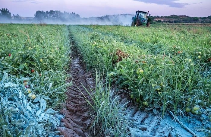 Advantages of Adding Sulfur Powder to the Soil