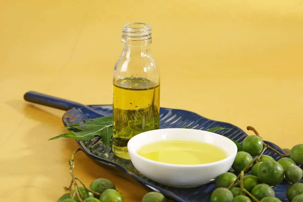 How to Mix Neem Oil for Plants & Its Application Process