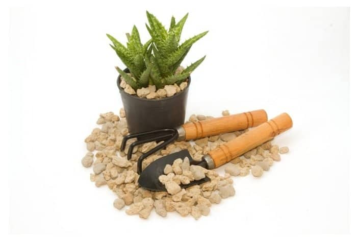 Ecommerce Stores Where To Buy Pumice For Gardening