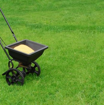 Is Purely Organic Lawn Food the Best Lawn Fertilizer