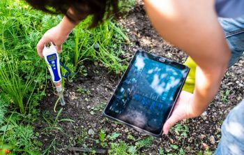 The Best pH Meter - An Ultimate Guide for your Soil