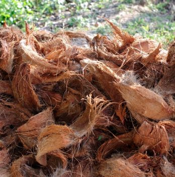 What is Coconut Coir Plus Its' Recommended Products