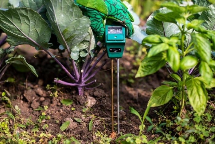 What is a Soil Moisture Meter