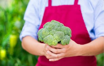 When to harvest Broccoli – How to Know When it's ready