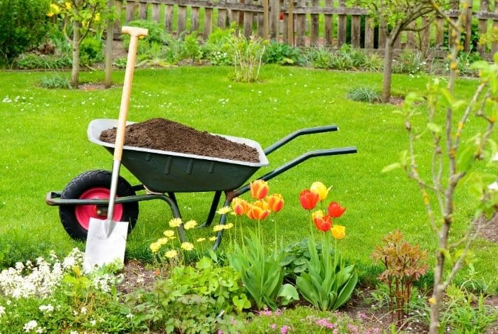 Benefits of Using Mushroom Compost to Your Garden Soil