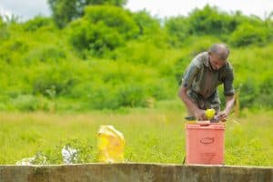 Where To Buy Compost Tea And How To Apply It