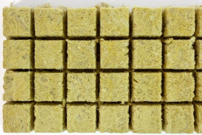 Get to Know What Rockwool Cubes Are