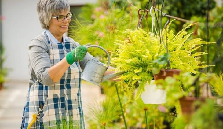 How Often Should I Give My Plants Nutrients
