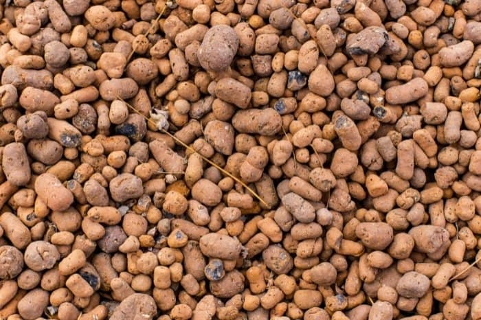 What is Clay Pebbles Hydroponics